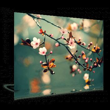 Fotoafdruk Mat